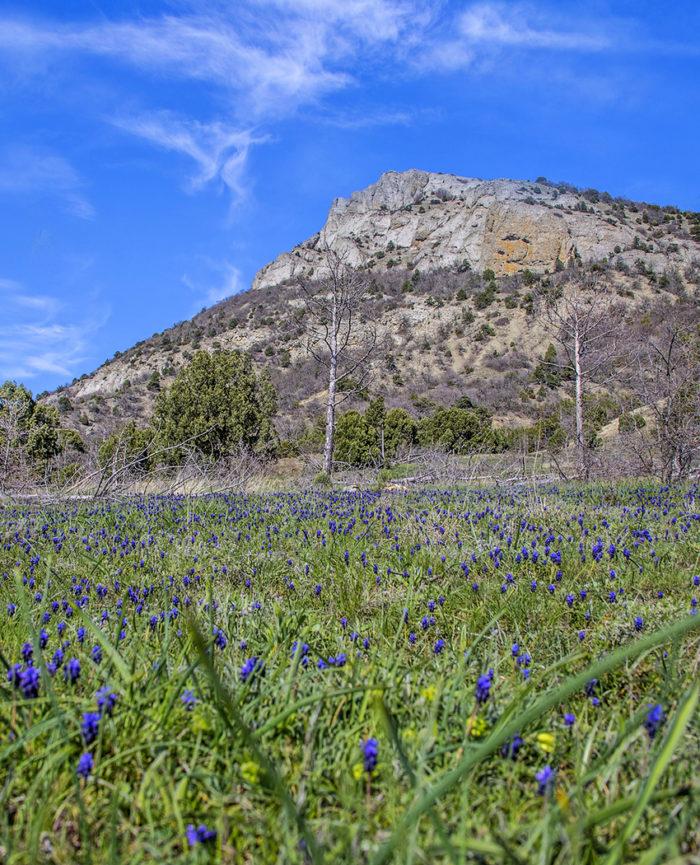 Гора Ай-Георгий в Судаке